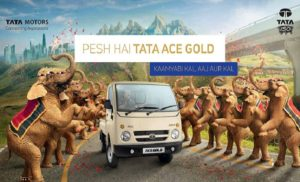 Ace Ace Gold
